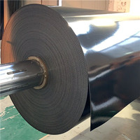 Light Weight Conveyor Belt Classification, EXQUISITE International Teach You How To Choose